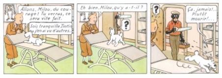 les perles de l'oral - Page 9 Tintin_au_congo_P._3