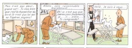 les perles de l'oral - Page 9 Tintin_au_congo_P._4